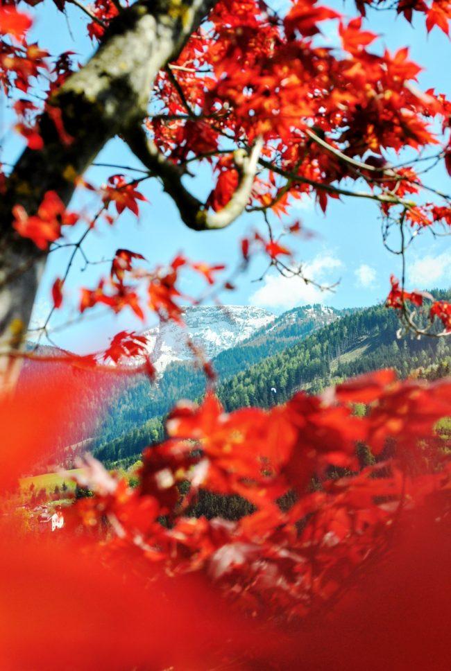 Zillertal 2016 Eindrücke in rot