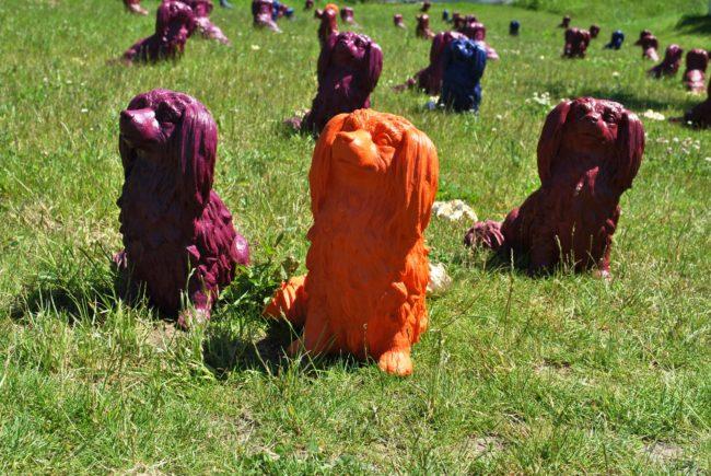 Gartenschau Hunde