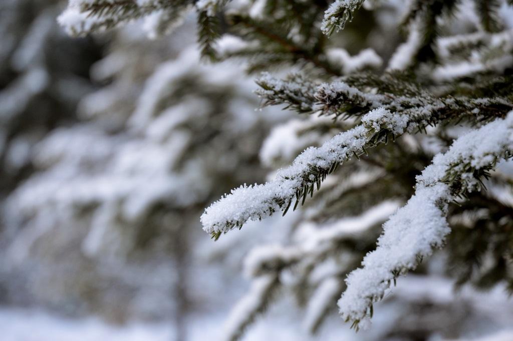 erster-schnee-im-dezember