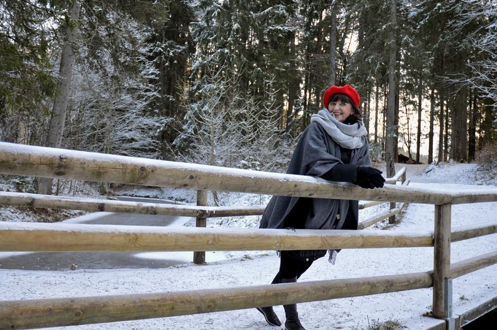 schnee-auf-der-bruecke