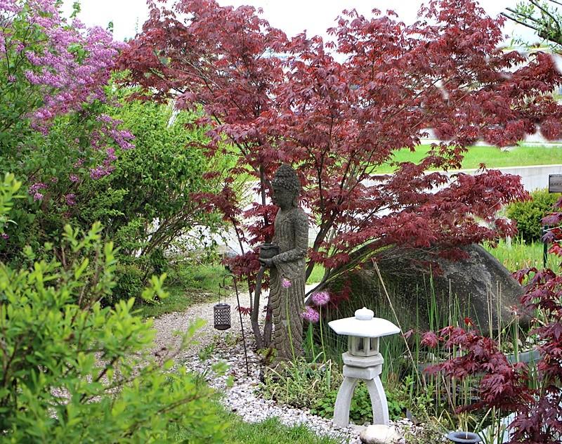 Garten von Edith im Interview