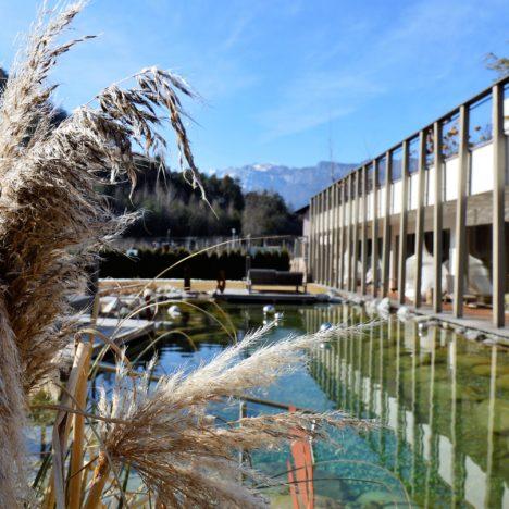 Gartenhotel Moser Hauptbild